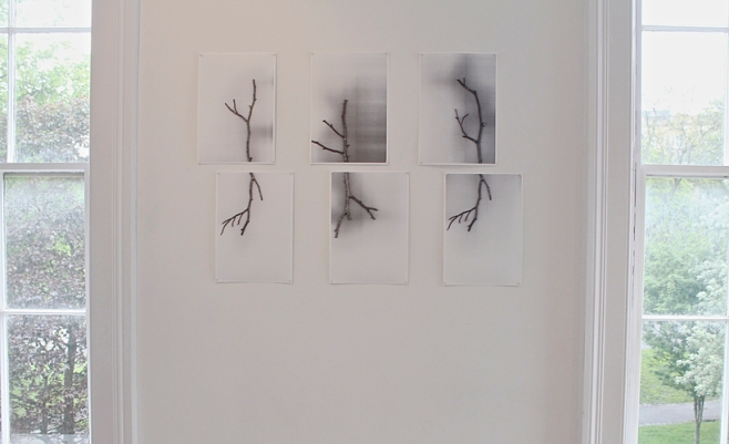 Caroline Inckle_Exhibition detail_RE-Production_Paired twigs_digital prints_2014web.jpg
